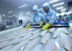 Fishery exports expected to hit US$8.5 billion this year