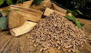 Viet Namnow world's second-largest fuel pellet exporter