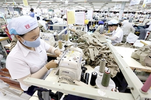 Vietnamese firms yet to fully take advantage of ASEAN markets: experts