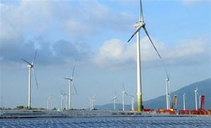 Wind power project No.5 Ninh Thuan put into commercial operation