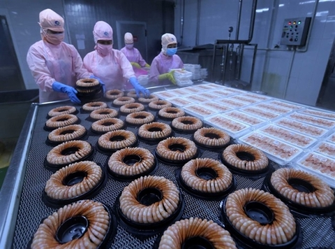 Seafood exports expected to reach $8.8 billion in 2021