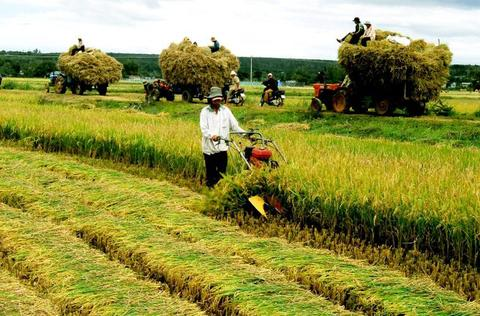 Agriculture need more investments and technology, say experts