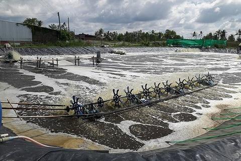 Hi-tech in aquaculture needed: experts