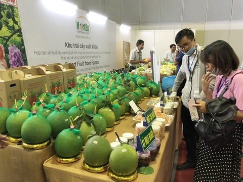 Vietnamese firms urged to tap Africa, Middle East markets
