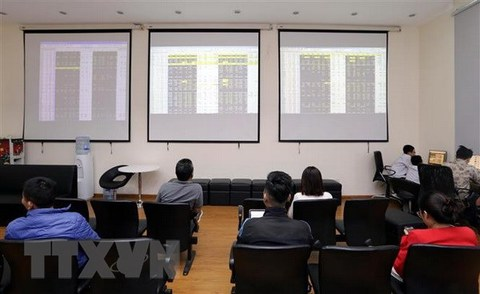 CPTPP approval lifts export stocks