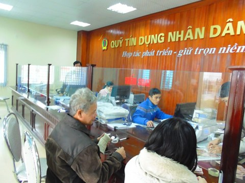 There were 1,181 people's credit funds operating in 57 cities and provinces by the end of June last year .— VNA/VNS Photo